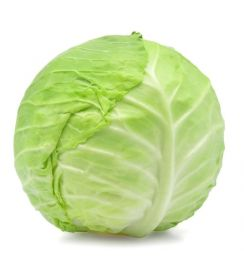 1 Large Whole Green Cabbage