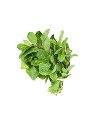 1 Bunch Fresh Mint