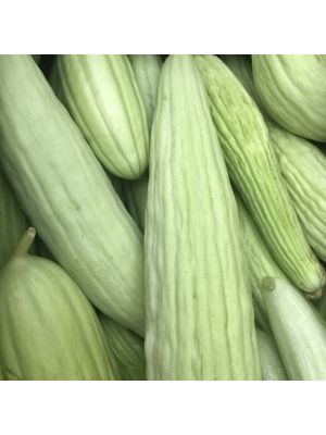 1 Large Piece Armenian Cucumber