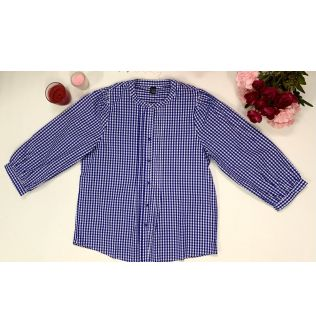 Blue Casual Checked Top for Women