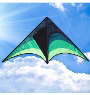 Large Delta Kites With Handle Line Outdoor Toys For Kids Kites Nylon Ripstop Albatross Outdoor Flying Kites