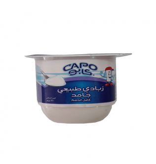 110g capo yogurt